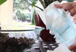 Bitkileri büyüten bebek bezli yöntem