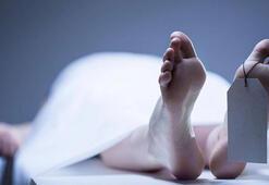 Bilim adamları ölümden sonra yaşamın olmadığını iddia ediyor