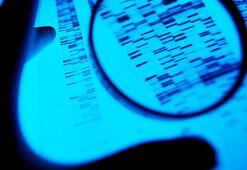 12 kişiyi öldüren seri katil, DNAdan soyağacı çıkartan bir site sayesinde yakalandı