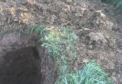 Evinin bahçesini köstebek yuvasına çevirdiler Sebebi ise...