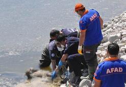 Baraj suyu çekilince korkunç görüntü ortaya çıktı Hemen ekipleri aradılar