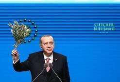 Cumhurbaşkanı Erdoğan tek tek açıkladı Çiftçilere müjde üstüne müjde
