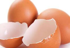 Yumurta kabuğundan neler yapılabilir