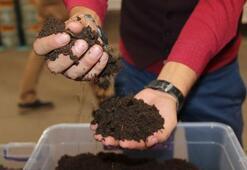 Tarımın geleceği solucanlara bağlı