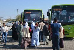 Diyarbakırda ulaşım çilesi sona erdi