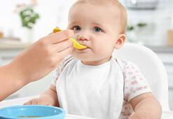 9 aylık bebek neler yiyebilir