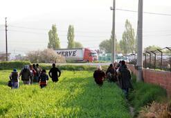 Son dakika: İzmirde halk ayaklandı 500 Suriyeli böyle kaçtı...