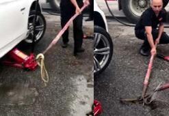 Otomobile giren yılanı çıkaran itfaiye, kürekle öldürdü