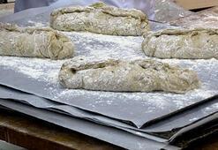 Finlandiyada böcekli ekmek satışa çıkıyor