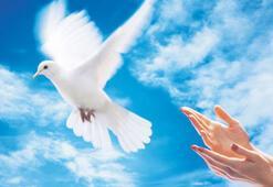 Barış istiyoruz hemen, şimdi, acil