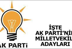 AK Parti milletvekili adayları listesi belli oldu - İşte tam liste