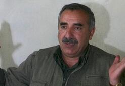 İran Karayılanın yakalamış sonra bırakmış