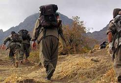 Terör örgütü PKKya iki ayda ağır darbe