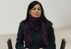Eski BDP milletvekili Ayla Akat Ata tutuklandı