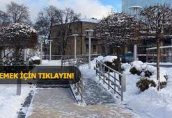 Kiev buz kesecek