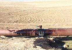 Boru hatlarından petrol hırsızlığına ceza artışı