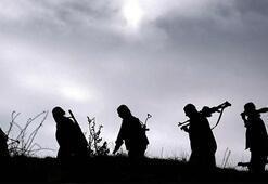 Bir darbe daha Çok sayıda PKKlı öldürüldü