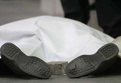 Dink cinayeti, Gülenin başka bir düzen getirmek için başlangıç  eylemiydi