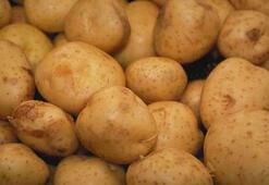 Patates üreticisinin yüzü güldü