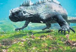 Godzilla yemek arıyor