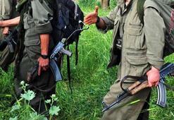 PKK'lılar çiftçileri rehin alıp, yaşam malzemesi satın aldırmış