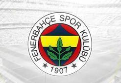 Fenerbahçe transfer haberleri - 28 Aralık Fenerbahçe transfer gündemi