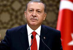 Main force will be Syrian Arabs against ISIL, Erdogan says