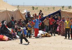 Fallujah civilians commit suicide