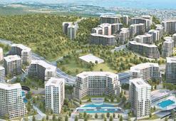 Tuzla'ya 'şehir' kurdu milyar $'lık teklif aldı