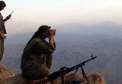 İran istihbaratı, PKKya silah yolladı