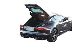 Jaguar'ın yoldaki en vahşi türü..