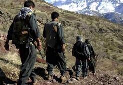 PKK'da büyük çatlak 40tan fazla terörist infaz edildi
