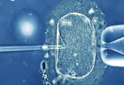 Dünyadaki 5 milyon IVF bebeğini neler bekliyor