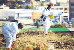 'Radyoaktif bahçe' için suç duyurusu