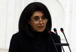 Leyla Zanaya çifte müjde