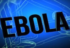 Ölümcül Ebola virüsü hakkında bilmeniz gereken 10 şey