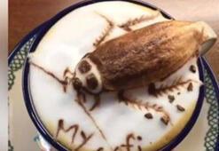 Tayvanlı barista, kahveye yeni bir tat kattı
