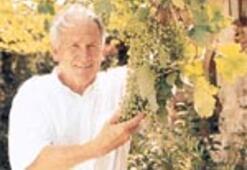 20. asrın son büyük şarabı