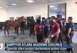 Suruçun şampiyon atlarına akademik dokunuş