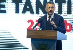 Cumhurbaşkanı Yardımcısı Oktay: Zillet ittifakı gücünü FETÖden ve Kandilden alıyor