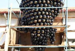 Yer: Isparta 3 bin 500 taneli dev üzüm salkımı…