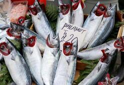 Turistlerin balık pazarı ilgisi