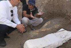Kayseride 2 metrelik fil kafası çıkarıldı