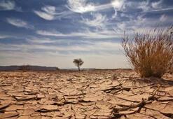Bilim insanlarından küresel ısınmaya çözüm: Güneşin parlaklığını düşürelim