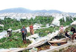 Antalyalı çiftçiye 35 milyon TL