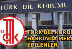 Hadi 1 Mart ipucu sorusu: Türk Dil Kurumu hakkında bilinmeyenler