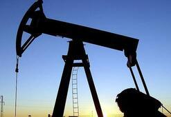 Küresel petrol talebi artacak