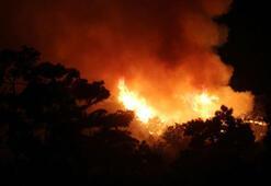 Milli Parkta korkutan yangın Kontrol altına alındı