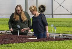 Hollandalı kadın çiftçilerden Türk meslektaşlarına övgü