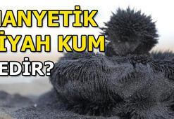 Manyetik siyah kum nedir